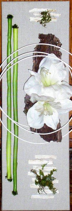 Amaryllis déstructuré sur toile de lin