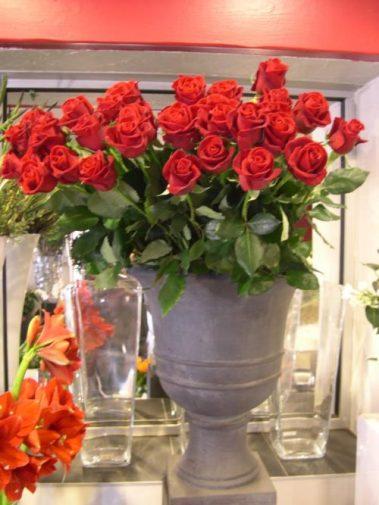 Vase Medicis de roses rouges