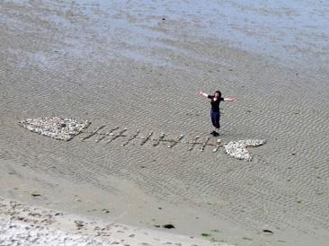 Land'art sur sable arette de poisson en bois flotté et galets