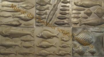 plaques de poissons d'avril au musée du Maitre Chocolatier Serge Couzicou