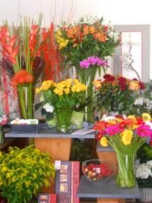 Fleurs de couleurs