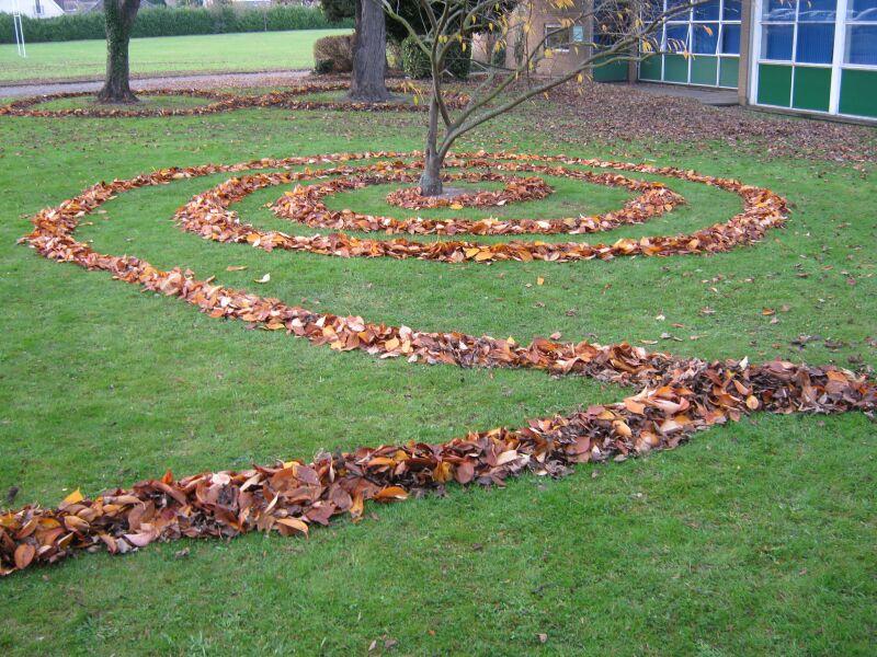 Land'art chemin de feuilles