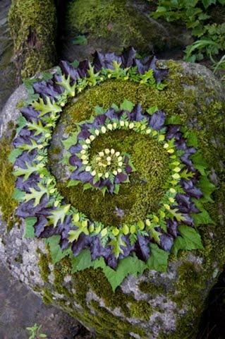Land'art forme concentrique bicolore de feuilles