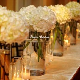 Vases de boules d'Hortensia blanc