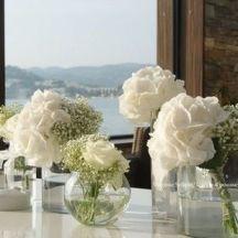 Vases d'hortensia