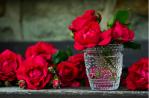 Roses rouges dans un verre