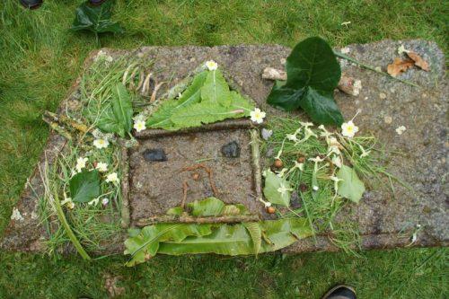 Scene végétale land'art