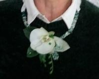 """Collier phapaenopsis en fleurs fraîches( ou tergal) """"Menthe à l'eau"""" (à Partir de 50€)"""