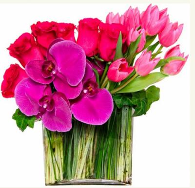 Composition deTulipes rose fuchsia , roses rose foncé et phalaenopsis dans un vase