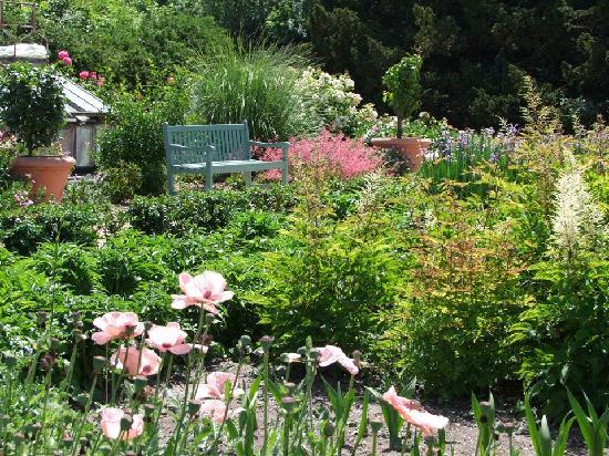 Jardin fouillis angalis