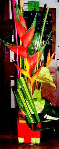 Composition linéaire fleurs exotiques