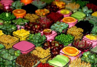 Composition en damier de fleurs, plantes et fruits