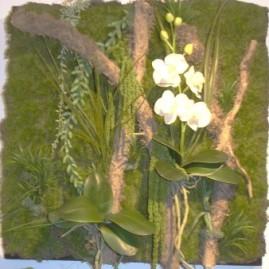Tableau en végétaux stabilisée (vendu)