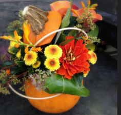atelier Citrouille en fleurs