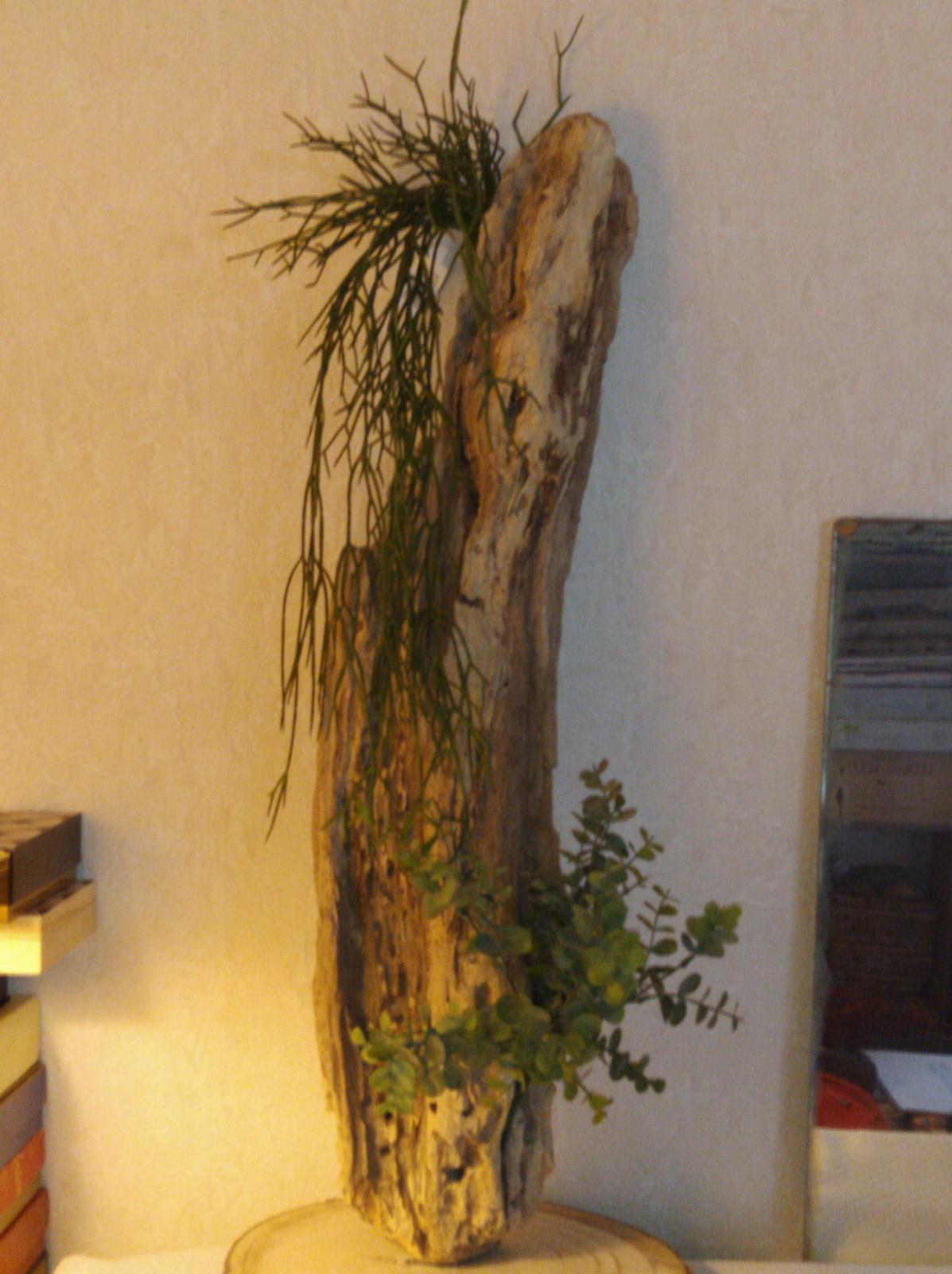 bois flotté végétalisé
