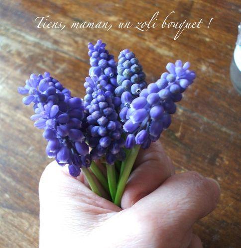 mini bouquet de muscaris